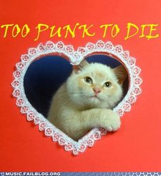 Too punk to die