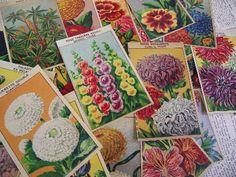 Vintage French Flower Labels...
