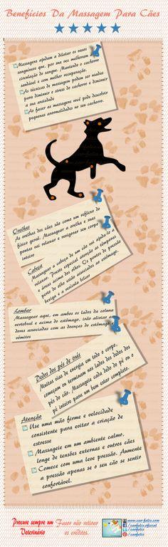 Benefícios da Massagem para Cães - 5 Maneiras de massagear o seu cachorro. #infografico #caes