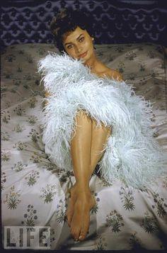 how beautiful is Sophia Loren?!