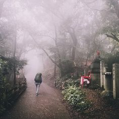 After New Zealand we are going to explore Japan on foot. Follow us on our 1'000 Km journey from Tokyo to Osaka on the Tokai Nature Trail. Stepping up to Mount Takao on Day 1 in rain what a start. . . . #japan #hikingculture #hikingworldwide #trekking #mountains #hiking #travel #travelphotography #travelgram #passionpassport #welivetoexplore #earthpix #traveling #nature #lifeofadventure #tourtheplanet #letsgosomewhere #picoftheday #landscape #landscapephotography #wanderlust #ourplanetdaily… Landscape Photography, Travel Photography, Asia Travel, Osaka, Wonderful Places, Trekking, Wilderness, New Zealand, Tokyo