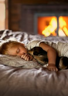'all cuddled up' #puppies http://www.aftershocksinteriordecorating.com