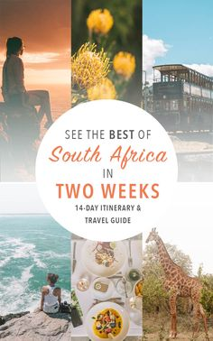 This two-week South Africa itinerary and travel tips can show you some of the best of the country, from wine regions to urban life, from safari to city, and from the sparkling Indian Ocean to the dese Knysna, Africa Destinations, Travel Destinations, Holiday Destinations, Bora Bora, Cool Places To Visit, Places To Travel, Travel Hotel, Airline Travel