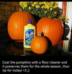 Life hacks make everything easier, so we scoured the internet to find the best ideas for Halloween decorating.From pumpkin carving, spooky decorations and even last-minute treats, these Halloween hack. Fete Halloween, Holidays Halloween, Halloween Pumpkins, Halloween Crafts, Halloween Decorations, Fall Decorations, Happy Halloween, Halloween Stuff, Fall Pumpkins