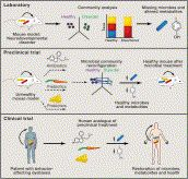 Toward Effective Probiotics for Autism and Other Neurodevelopmental Disorders, Cell, 12-19-13, Authors:  Jack A. Gilbert, Rosa Krajmalnik-Brown, Dorota L. Porazinska, Sophie J. Weiss, Rob Knight.