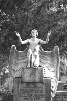Amazing large male cemetery angel