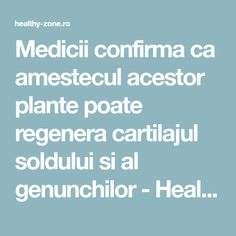 Medicii confirma ca amestecul acestor plante poate regenera cartilajul soldului si al genunchilor - Healthy Zone Health And Wellness, Health Fitness, Metabolism, Good To Know, Diy And Crafts, Medicine, Healthy, Pixi, Apothecary