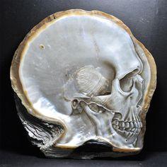 carved shell skulls by gregory halili