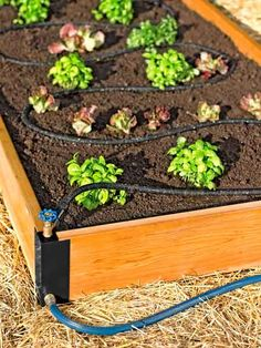 Top 100 Products 2012 outdoor living raised bed set
