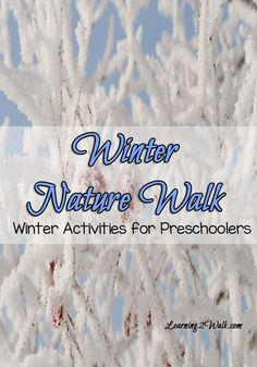 Its hard doing fun preschool activities in winter but this activity may be just what you need. Bundle up and step outside and have a winter nature walk- I am sure this is a winter preschool activity your kids will love. Sensory Activities Toddlers, Nature Activities, Winter Fun, Winter Theme, Winter Outdoor Activities, Walking In Nature, Plein Air, Outdoor Learning, Outdoor Education