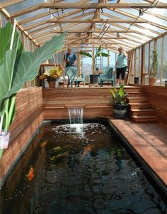 Aquaponics System - Inspirations Modern Indoor Fish Pond Design To Decoration Your Home Indoor Koi Fish Pond Design With Wooden Material Break-Through Organic Gardening Secret Grows You Up To 10 Times Koi Fish Pond, Fish Ponds, Fish Pond Gardens, Fish Garden, Garden Ponds, Backyard Ponds, Koi Carp, Betta Fish, Aquaponics System