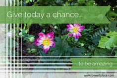 Give today a chance to be everything you ever wanted it to be. Campaign, Bouquet, Bloom, Happiness, Wellness, Content, Thoughts, Medium, Words