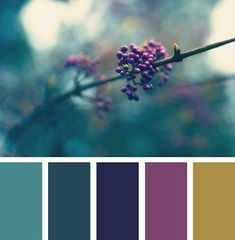 nature hues color scheme from Design Seeds Pantone, Colour Board, Color Swatches, Paint Swatches, Color Stories, Color Pallets, Color Theory, House Colors, Color Combos