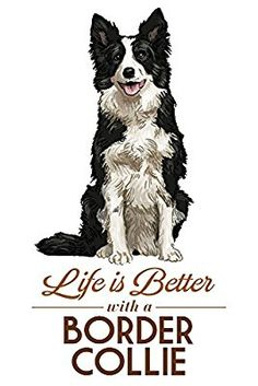 Border Collie - Life is Better - White Background (Art Prints, Wood & Metal Signs, Canvas, Tote Bag, Border Collie Art, Border Collie Puppies, Collie Mix, Border Collie Colors, I Love Dogs, Cute Dogs, Dog Quotes, Dog Art, Dog Training