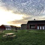 Virginia Wineries Worth The Trip From DC