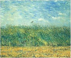 Wheat field with Partridge