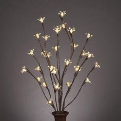 Cherry blossom twig lights (earth).. I've been meaning to make these