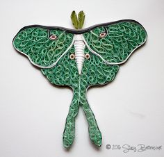 A quilled Luna Moth made by artist Stacy Bettencourt of Mainely Quilling in Jefferson, Maine.