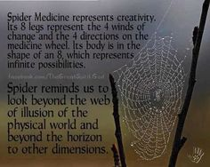 Native wisdom regarding spiders