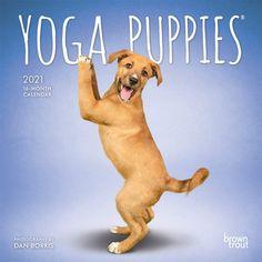 2021 Slimline Calendar Puppies Month To View