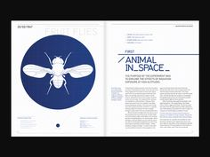 Major Events In Space by Stuart Dowson, via Behance