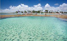 Imagem de http://www.sbtour.com.br/wp-content/uploads/2014/05/1360002580_476404748_6-aluga-se-casa-em-muro-alto-porto-de-galinhas-pe-pernambuco.jpg.