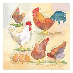 Poultry Greetings Card | Emma Ball | Chicken themed Card
