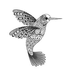 Zentangle stylized black hummingbird hand drawn vector by i_panki on VectorStock®