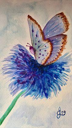 Moth, Insects, Animals, Creativity, Animales, Animaux, Animal, Animais