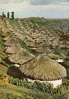 Kikuyu Village, East Africa