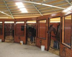Wonderful idea of the rounded shape so all the horses can see each other