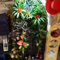 Mur végétal dans salon de coiffure