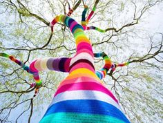 Eco Street Art: Trees with Scarves!