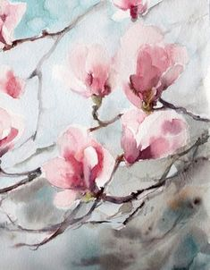 Magnolia Blossoms Original Watercolor Painting by CanotStop