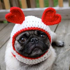 Pickles the pug...sweetheart, sweethoot etsy--um yes please?