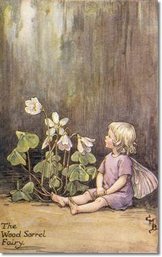 The WOOD SORREL Fairy ~ Cicely Mary Barker ~ Wood Sorrel, Cicely Mary Barker, Flower Fairies