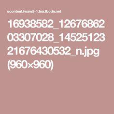 16938582_1267686203307028_1452512321676430532_n.jpg (960×960)