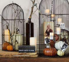 New Ideas large bird cage decor pottery barn Big Bird Cage, Large Bird Cages, Pottery Barn Halloween, Girls Room Paint, Diy Bird Bath, Spring Birds, Pink Bird, Crafts To Do, Shabby Chic Decor