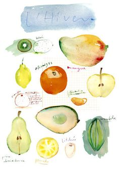 Watercolor food illustrations, Kitchen wall art prints by lucileskitchen Fruit Illustration, Food Illustrations, Watercolor Illustration, Painting Prints, Watercolor Paintings, Watercolors, Watercolor Fruit, Fruit Print, Fruit In Season