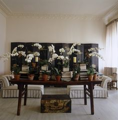 Collection of orchids on Asian table visually pops off black lacquer Chinese screen; sitting area is double chaises; Mimmi O'Connell