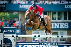 McLain Ward and Rothchild's intensity resulted in two clean rounds.  Photo by Jon Stroud for Shannon Brinkman
