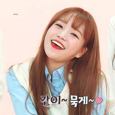 아이즈원 조유리 애교 움짤.gif Kpop Girl Groups, Kpop Girls, Yuri Kpop, Yuri Gif, Secret Song, Choi Yoojung, Sakura Miyawaki, Country Girls Outfits, Japanese Girl Group