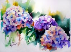 Jean Claude Papeix - Gorgeous Watercolor Painting of Blue-Lilac Hydrangea Blooms♥ Watercolor Cards, Watercolour Painting, Watercolor Flowers, Watercolors, Watercolour Tutorials, Watercolor Techniques, Art Floral, Hydrangea Painting, Painting Inspiration