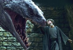 Harry stabs the Basilisk with the Sword of Gryffindor.