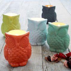 Filled Owl Candles   west elm
