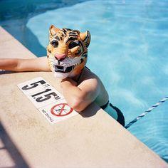 Photographic Moratorium - Animal Masks