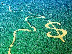 Projeto Purus e o financiamento do meio ambiente. Apropriação de bens naturais por capitais privados
