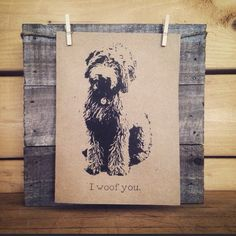 In this article, we will be discussing Goldendoodle grooming. We will outline the most important steps on how to groom a Goldendoodle, and we will even touch a little bit on Goldendoodle grooming styles. Goldendoodle Grooming, Mini Goldendoodle, Doodle Dog, Dog Cards, Animal Quotes, Cute Tshirts, Dog Gifts, Puppy Love, Fur Babies