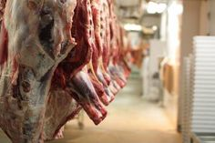 The Meat Industry Is Licking Its Chops Over Obama's Massive Trade Deal