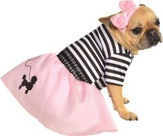 January 14 is Dress Up Your Pet Day!  and this outfit would be perfect for Valentines Day too!